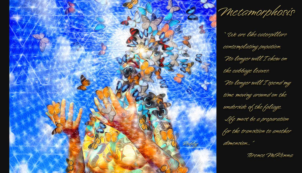 Metamorphosis – a wandering spiritual form ...